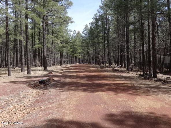 6126 Buck Springs Rd., Pinetop, AZ 85935 Photo 137