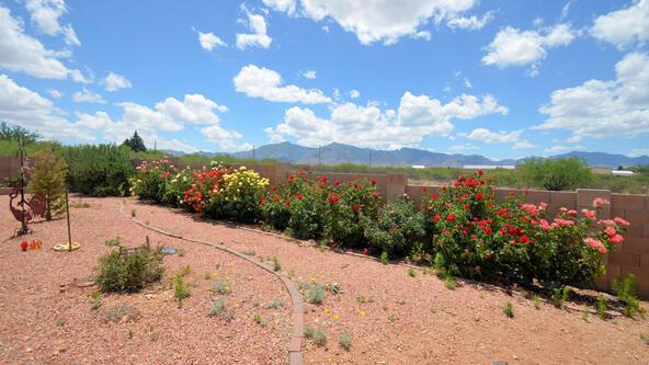 3920 S. Moson Rd., Sierra Vista, AZ 85650 Photo 39