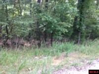 Home for sale: Lot 76 Old Farm Trail, Norfork, AR 72658