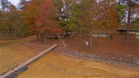 301 County Rd. 173, Crane Hill, AL 35053 Photo 63