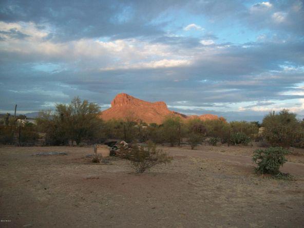 7700 N. Desert Rose Tr, Tucson, AZ 85743 Photo 31