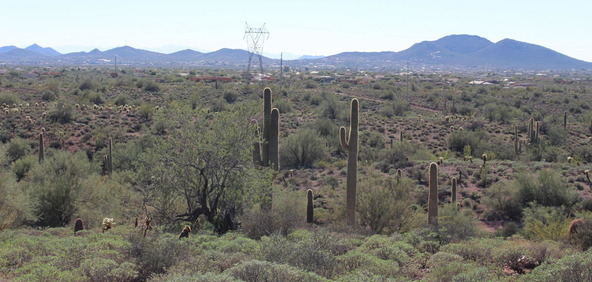 41000 N. 7th St., Phoenix, AZ 85086 Photo 9