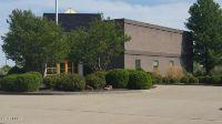 Home for sale: 4742 Holts Prairie, Pinckneyville, IL 62274