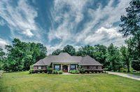 Home for sale: 142 Ashbrooke Trl, Madison, MS 39110