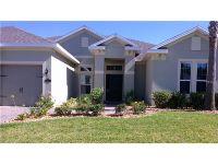 Home for sale: 141 Bridger Trail Ct., Minneola, FL 34715