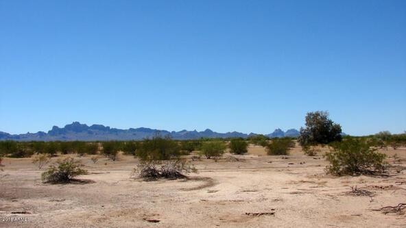 517xx U W. Tonto St., Tonopah, AZ 85354 Photo 28