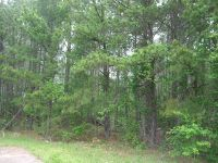 Home for sale: Lot 1 Hwy. 57, Macon, GA 31217
