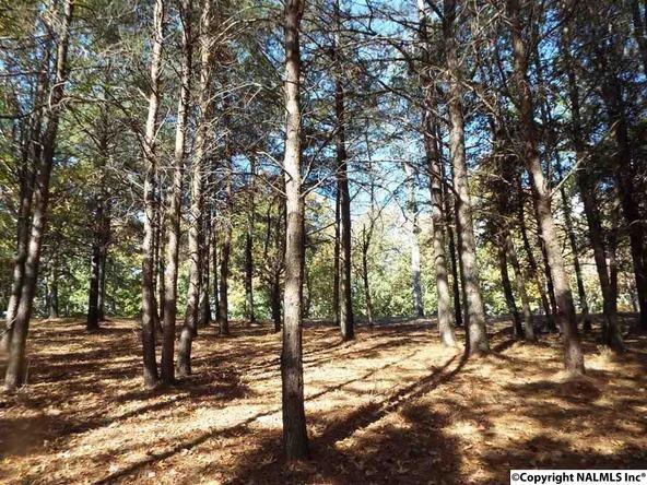 11 S. County Rd. 89, Mentone, AL 35984 Photo 5