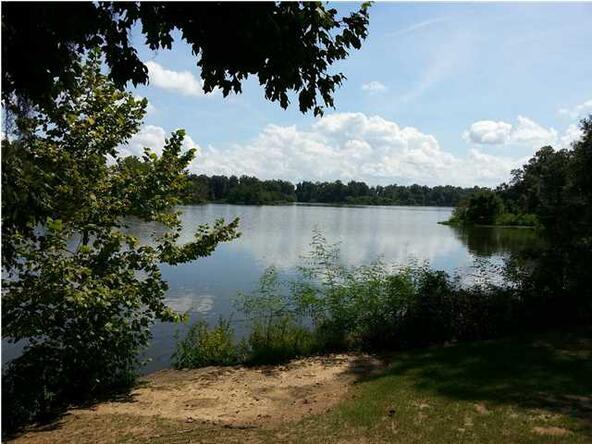 2043 Robinson Pond Rd., Prattville, AL 36067 Photo 10