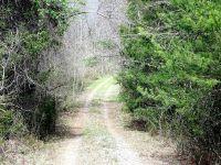 Home for sale: 0 Matts Trail, Nathalie, VA 24577