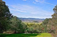 Home for sale: 0 Silverado Trail, Calistoga, CA 94515