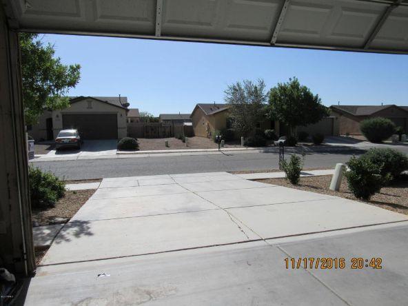 8316 W. Razorbill, Tucson, AZ 85757 Photo 30