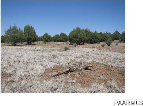 292 Sabrina, Ash Fork, AZ 86320 Photo 8