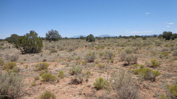 4768 South Rim Ranch Rd., Williams, AZ 86046 Photo 39