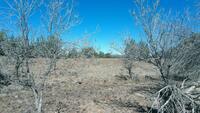 Home for sale: 87 Acres, Ash Fork, AZ 86320