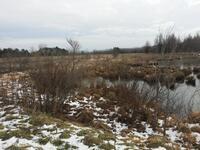 Home for sale: 14701 Long Rapids Rd., Lachine, MI 49753