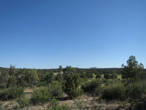 15440 N. Talking Rock Ranch Rd., Prescott, AZ 86305 Photo 3
