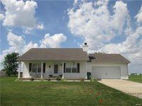 Home for sale: 613 Rutter, Saint Libory, IL 62282