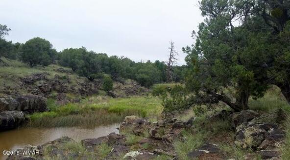 8271 Ridge Dr., Show Low, AZ 85901 Photo 5
