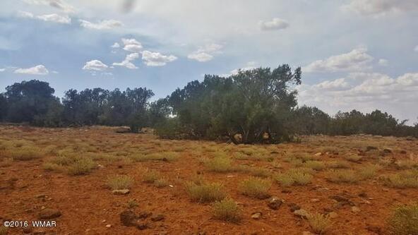 2075 Parker Ranch Rd., White Mountain Lake, AZ 85912 Photo 10