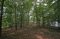 Home for sale: 67 Hickory Ridge, Alexander City, AL 35010