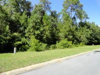 Home for sale: Lot 31 Lighthouse Way, Woodbine, GA 31569