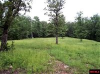 Home for sale: Lot 4 Homestead Ln., Lead Hill, AR 72644