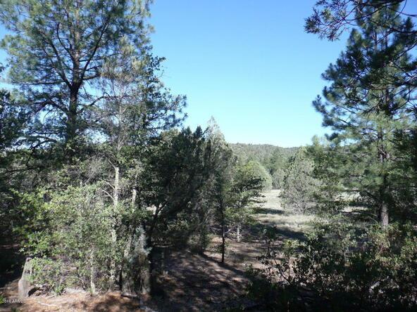 200 E. Cline Crossing, Young, AZ 85554 Photo 72