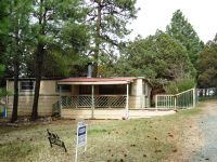 Home for sale: 92 Swallow Dr., Ruidoso, NM 88345