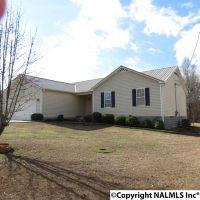 Home for sale: 898 Hampton Rd., Southside, AL 35907