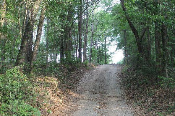 30191 Hollinger Creek Dr., Robertsdale, AL 36567 Photo 2