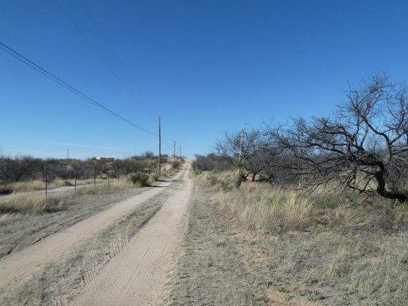 6 Ac. E. Ridge, Saint David, AZ 85630 Photo 14