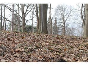 Blossom Ln., Perinton, NY 14450 Photo 3