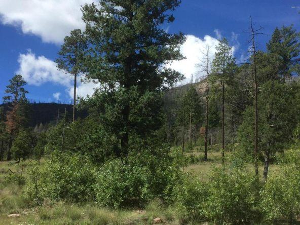 22 Cr 2074, Alpine, AZ 85920 Photo 19