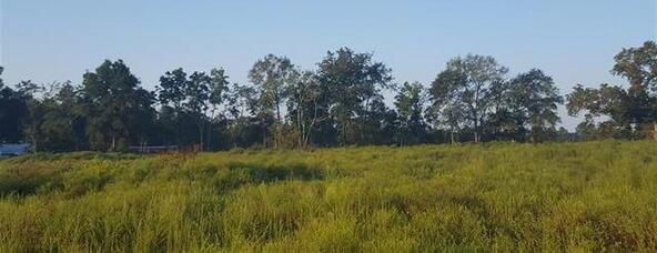 Tbd County Rd. 40, Coffee Springs, AL 36318 Photo 10