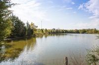 Home for sale: 6319 Cox Rd., Arrington, TN 37014
