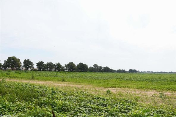 85 Acres Willow Rd., Jonesboro, AR 72404 Photo 11