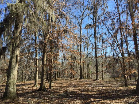 17 Red Eagle Rd., Lowndesboro, AL 36752 Photo 6