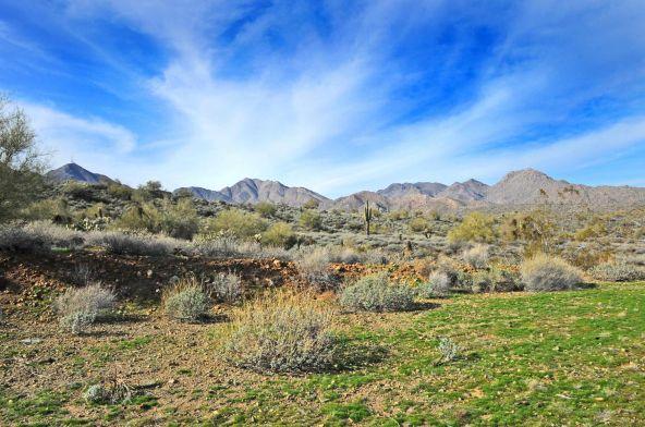 14340 E. Desert Tortoise Trail, Fountain Hills, AZ 85268 Photo 3