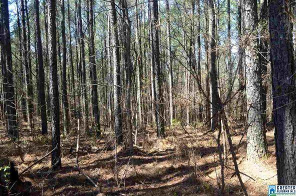 9835 Camp Oliver Rd., Adger, AL 35006 Photo 4