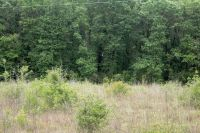 Home for sale: 00 Open Pond Rd., Samson, AL 36477