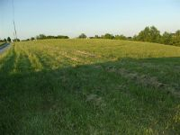 Home for sale: 6.5 Ac. Michelle Dr., Brooksville, KY 41004