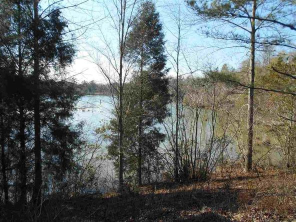 16.9 Acres Private Rd. 1363, Ariton, AL 36311 Photo 1
