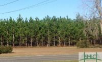 Home for sale: 0 Rye Patch Rd. N.E., Ludowici, GA 31316