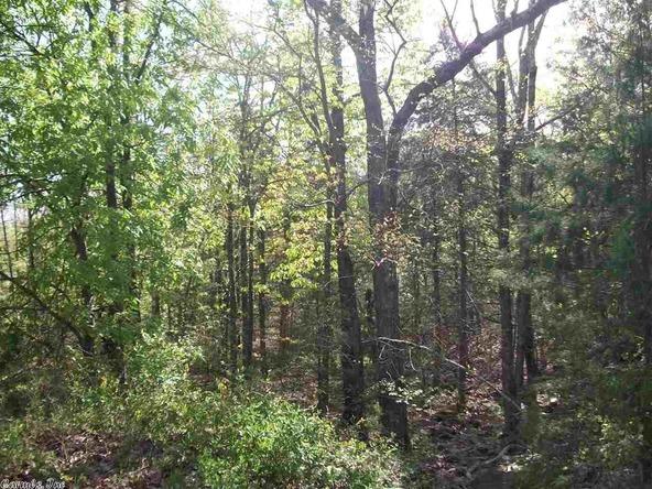 44 Pine Trail, Higden, AR 72067 Photo 5