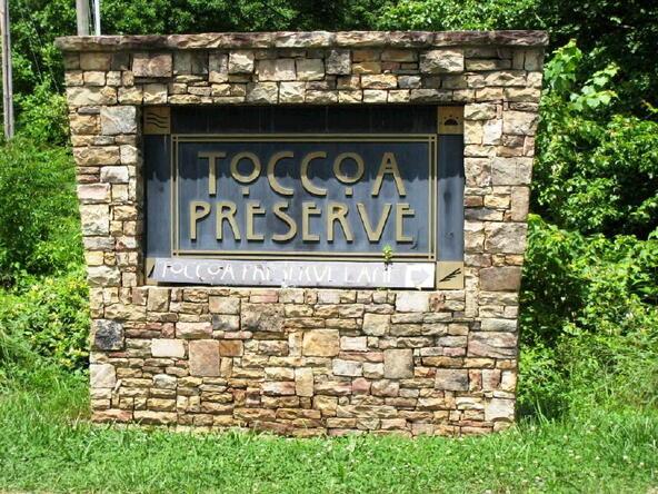 Lot 21 Toccoa Preserve, Blue Ridge, GA 30513 Photo 8