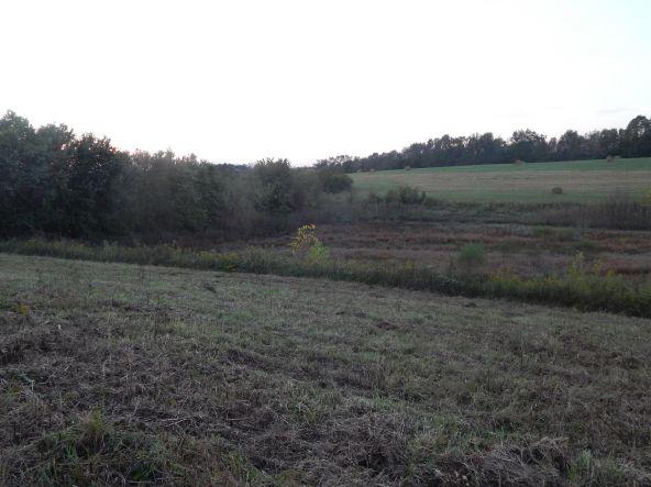 5021 Jacks Creek Pike, Lexington, KY 40515 Photo 7