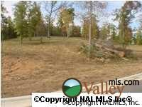 807 Lakewood Dr., Fort Payne, AL 35967 Photo 1