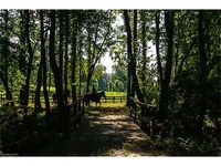 Home for sale: 31 Taddington Cir., Columbus, NC 28722