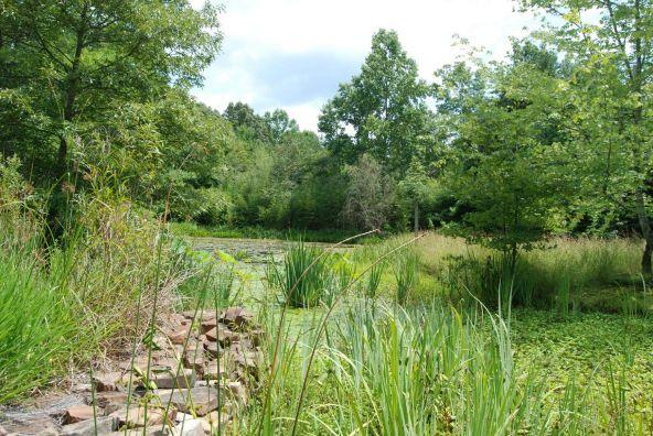 70 County 944 Rd., Mentone, AL 35984 Photo 53